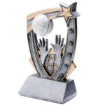 3D Resin Volleyball 3D RST Series Resin Trophy Awards