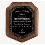 Marble Magic Shield Plaque Recognition Plaques